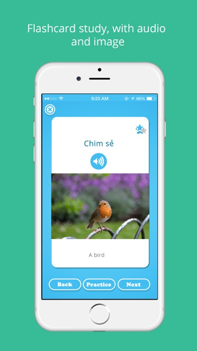 Learn Vietnamese with LinGo Play - facebook.com