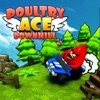 Poultry ACE Downhill Car Fun