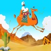 Dubai Camel Rider