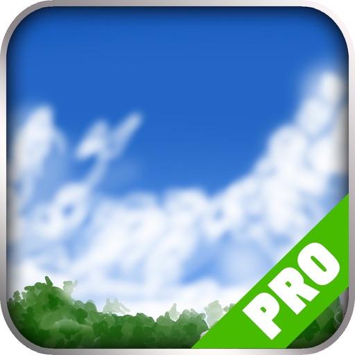 Game Pro - Grandia Version iOS App