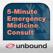 5-Minute Emergency Medicine Consult - Rosen & Barkin's