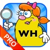 WH Question Cards – Pro: Who, What, When, Where, Why