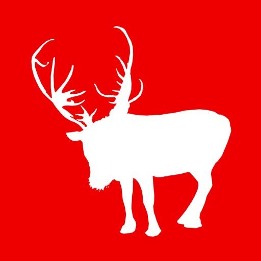 ReindeerCam