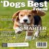 A Dogs Best Friend