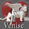 Venise 1ere fois