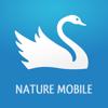 Oiseaux 2 PRO - Le Guide de Poche des Oiseaux de France et d'Europe