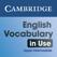 English Vocabulary in Use Upper Intermediate Activities