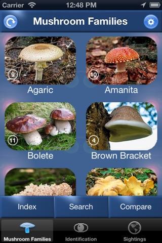 Mushroom Id North America - Fungi Identification Guide to Toadstools and Mushrooms screenshot 1