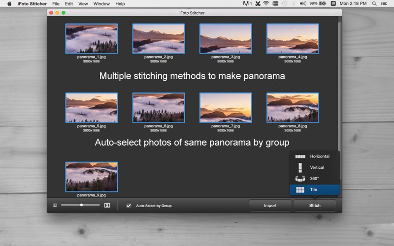 iFoto Stitcher - Make Panorama Photo with Ease for Mac
