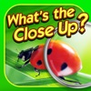 What's the Close Up? ~ guess the hidden object in this word puzzle of close up pics