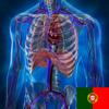 Anatomia & fisiologia animação