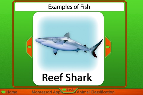 Montessori Approach to Zoology - The Animal Kingdom (Vertebrates) screenshot 3