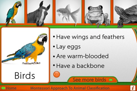 Montessori Approach to Zoology - The Animal Kingdom (Vertebrates) screenshot 2
