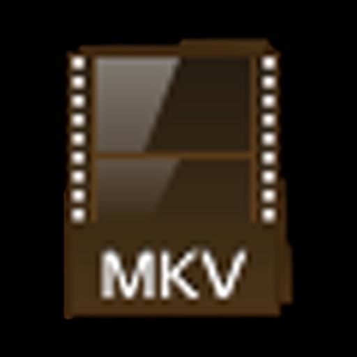 MKV Converter Expert