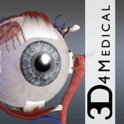 Eye - Practical Series
