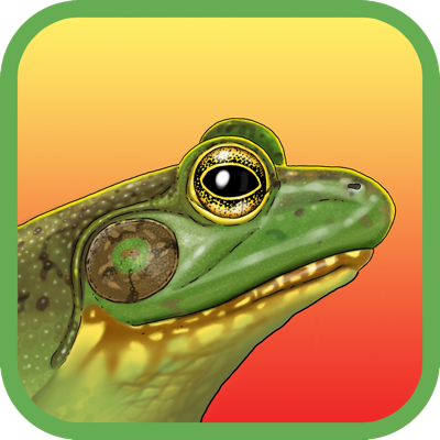 Noisy Frog Sing-Along app review: learn all about frog songs in this fun and educational children's book