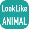 AnimalCam : Camera app that tell you what animal that look like you!