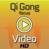 Qi Gong Focus