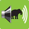 AudioZoo: sonidos animales