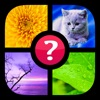 Guess the Word! ~ Free Photo Quiz with Pics and Words