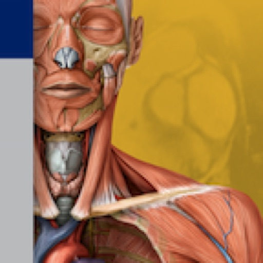 Thieme Anatomy on the Go 2.0 – English