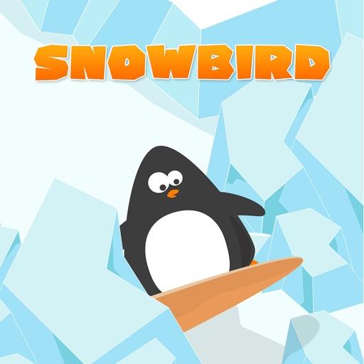 SnowBird Game iOS App