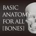 らくらく解剖学[骨]