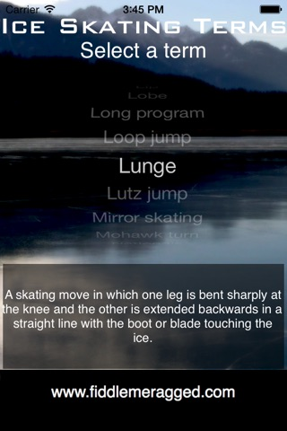 Ice Skating Terms screenshot 1