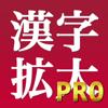 漢字拡大Pro | 手書き入力機能付き