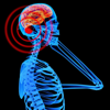 Electromagnetic Radiation Survival Guide:Solutions-Protect Yourself & Family