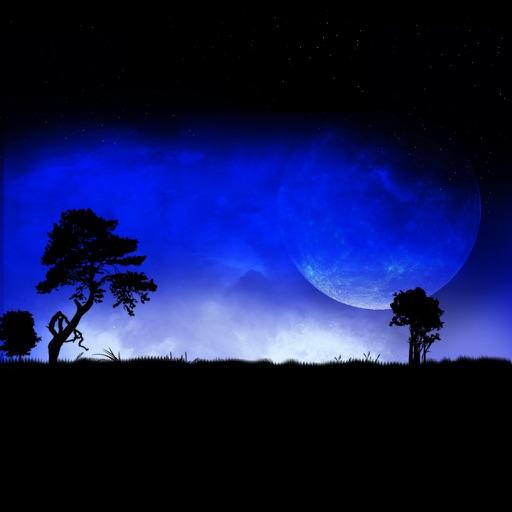星空月下:Star Sky