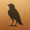 Blackbird! Icon