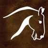 EquiSketch Records - The Stable, Rider and Show Record Keeper for Horse Lovers