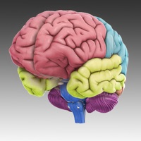 3D Brain app review: discover how each part of your brain functions