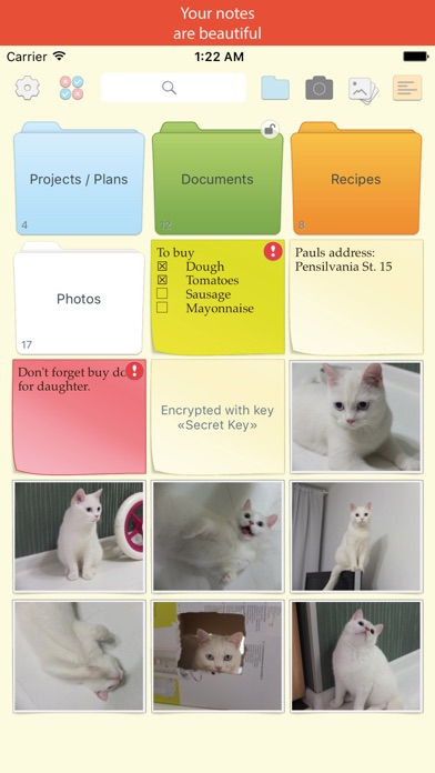 Screenshot of Notex – best notes (with photos, folders, encrypted with secure keys)1