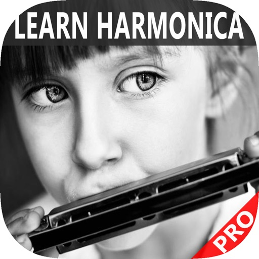 harmonica lessons online