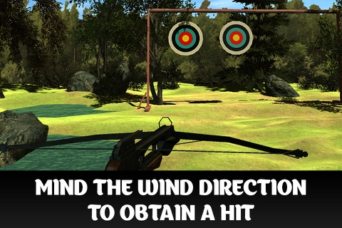 Crossbow Shooting Championship 3D Full screenshot 2