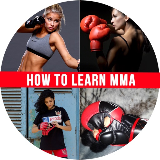 How to Learn MMA - MMA Mount and Side Control Techniques for Beginners