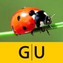 Insekten & Schmetterlinge bestimmen – entdecken Sie die 100 ...