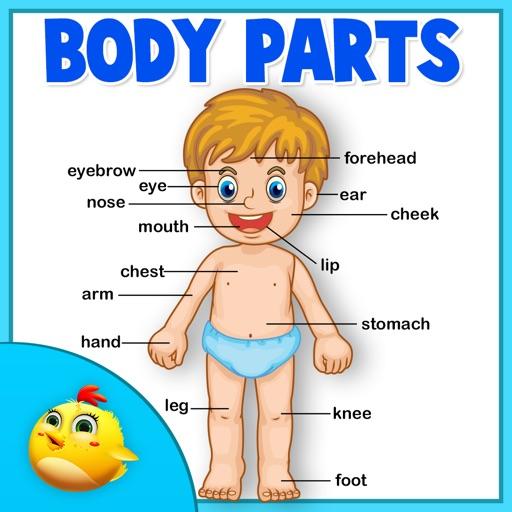 Learning Human Body Part 1 iOS App
