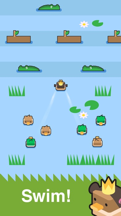 Dashy Ducks Screenshot