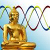 Bio Journal - Your Biorhythm