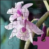 Beautiful Orchid Jigsaw HD Images - Puzzli Games For iPhone & iPad