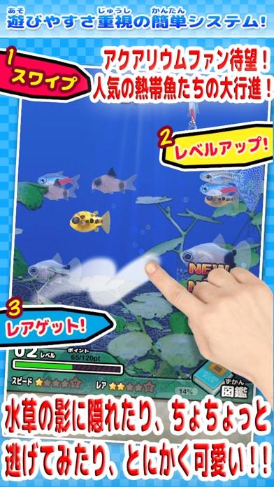 ちっちゃな魚図鑑のスクリーンショット2