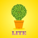 Lucky Cactus Mini icon