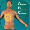 Acupuncture Quiz - Point Locations