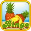 All The Fruit Bingo Edition HD - Play In The Dash Casino With And Ride The Classic Craze Ninja Pro