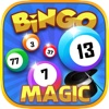 Bingo Magic 2