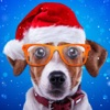 Christmas Face Stickered-Cute Animal Camara with Photo Editing
