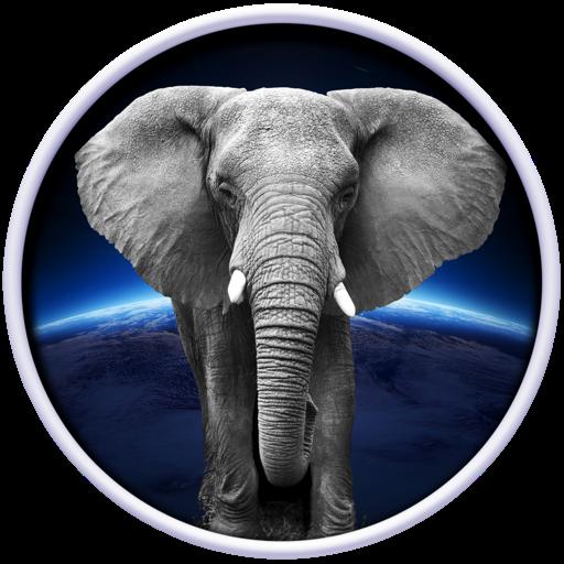 Animal World 3D